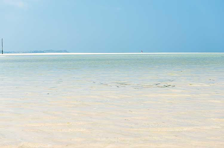 [Hayle - Beach, Low Tide #3]