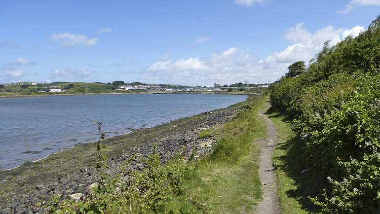 [Hayle - Carnsew Footpath beside the River]