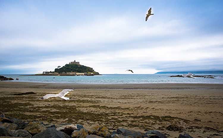 [Marazion Beach with Mount and Seagulls]