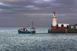 [Newlyn - Lighthouse with Fishing Boat]
