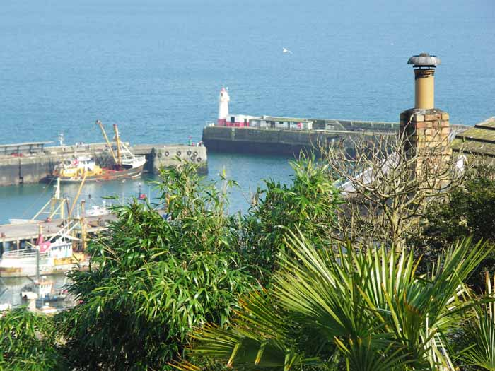 [Newlyn - from Bay View Terrace]