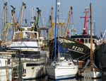 [Newlyn Harbour, with Fishing Boat PZ 203]