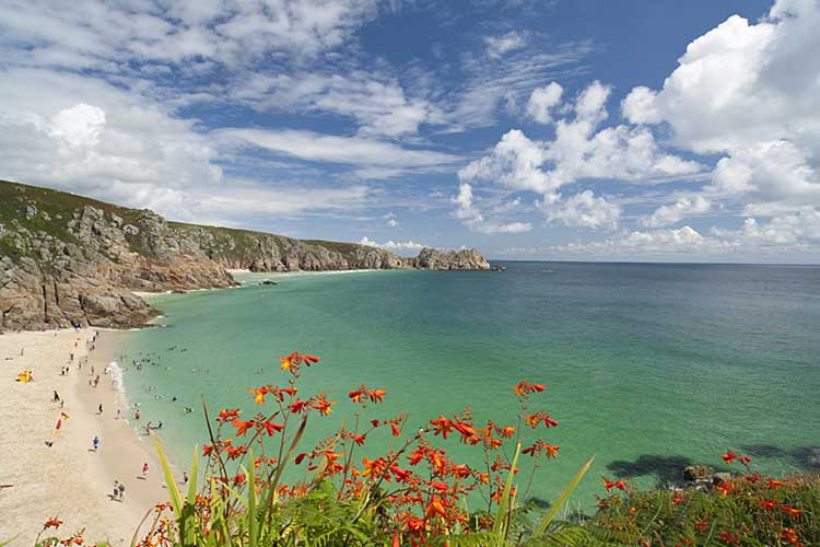 [Porthcurno, Cornwall - Beach and Logan Rock with Monbretia]