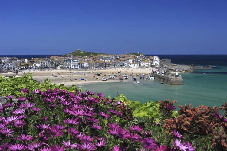 [St Ives - from The Malakoff with Flowers]