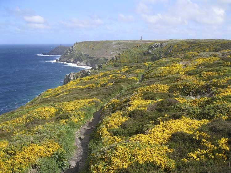 [Cliffs above Maen Dower to Cape Cornwall]